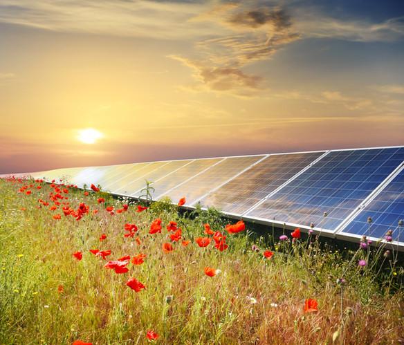 Solar Panel Project.jpeg
