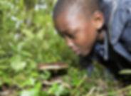 Forest Days.jpg
