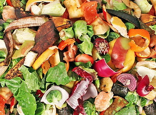 Composting Food Waste.jpg