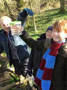 SSSP Tree planting with schools at the H