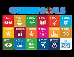 E_2018_SDG_Poster_with_UN_emblem-800x618