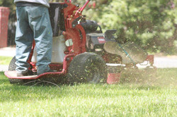 Lawn Care: Weekly Service