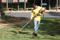 Lawn & Grounds Care