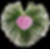 Through the Heart Logo