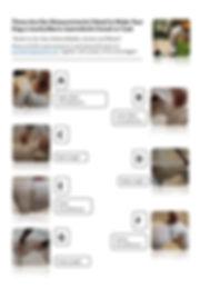 Dog measurements.jpg