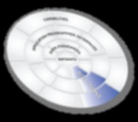 IPRDS API CHART.png