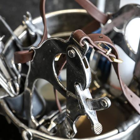 Equine Dentistry Equipment