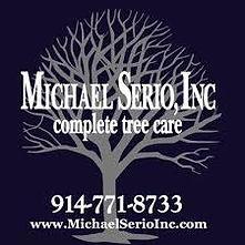 Michael Serio Inc.