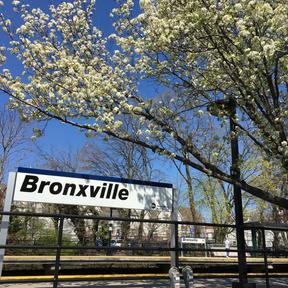 Metro North at Bronxville