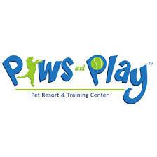 paws and play.jpeg