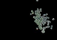 PUL_30_dark_green_splatter.png
