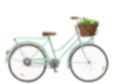 PUL_45_bike_limes_updated_compr.png