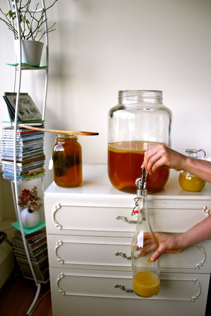 A versatile probiotic beverage made from sweetened tea. Add fruit for flavouring and turn this brew into a healthy summery carbonated beverage.