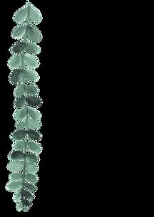 PUL_42_plants01_3.png