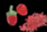 PUL_39_raspberries.png