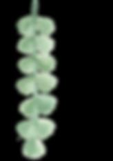 PUL_42_plants02_5.png