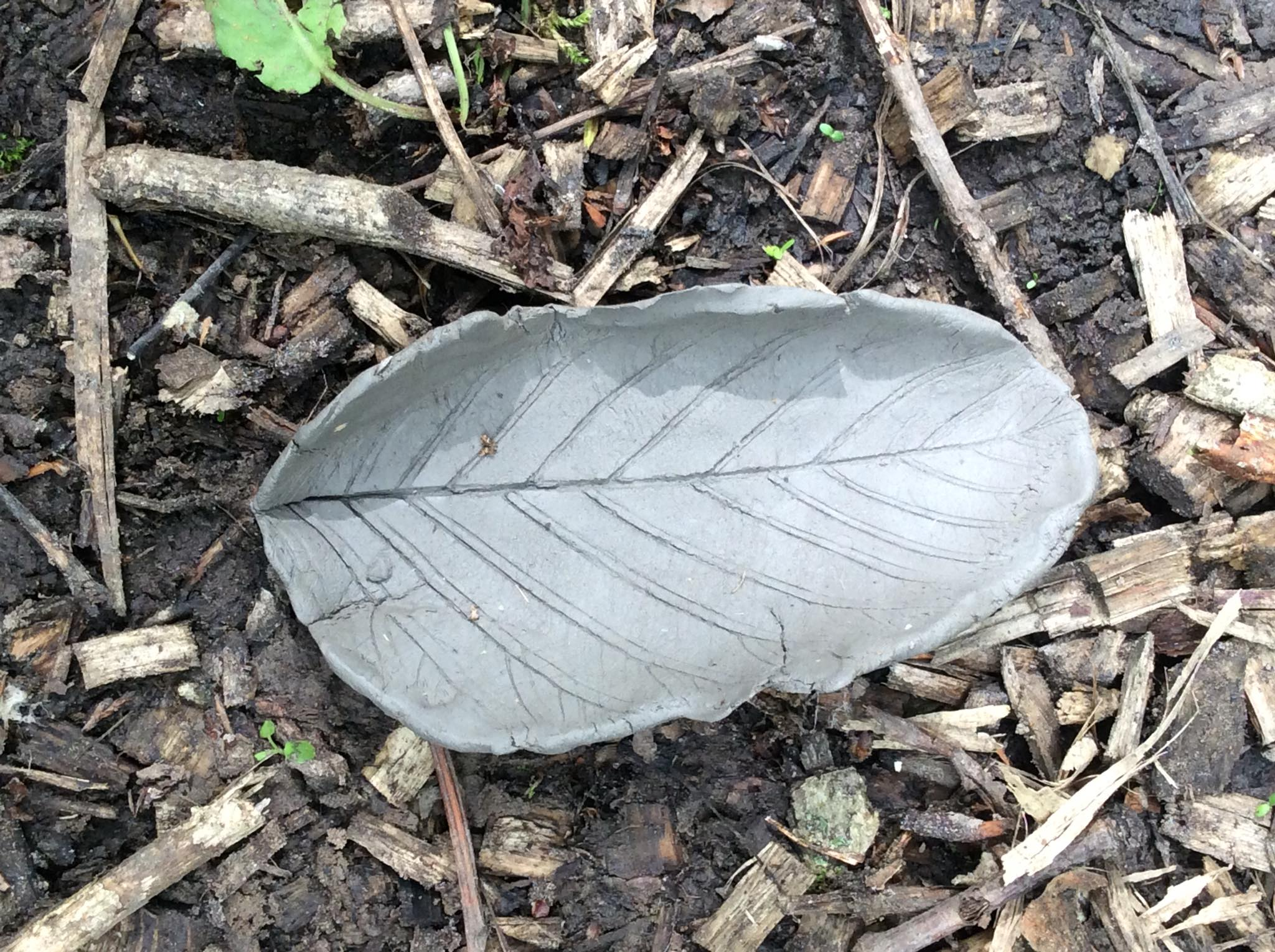 Clay, leaf print bowl