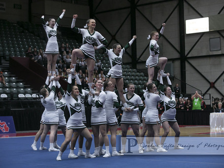 Allen Park cheer wins D2 state championship; Gibraltar Carlson places 2nd w/ PHOTO GALLERY