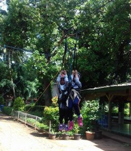 flying fox anak tandem