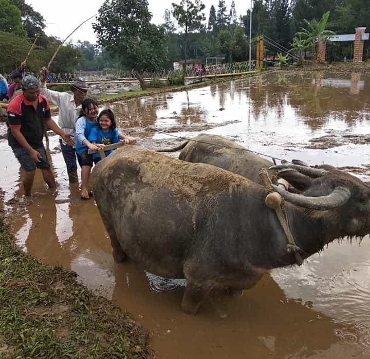Field Trip di Citra Alam Riverside, Bogor