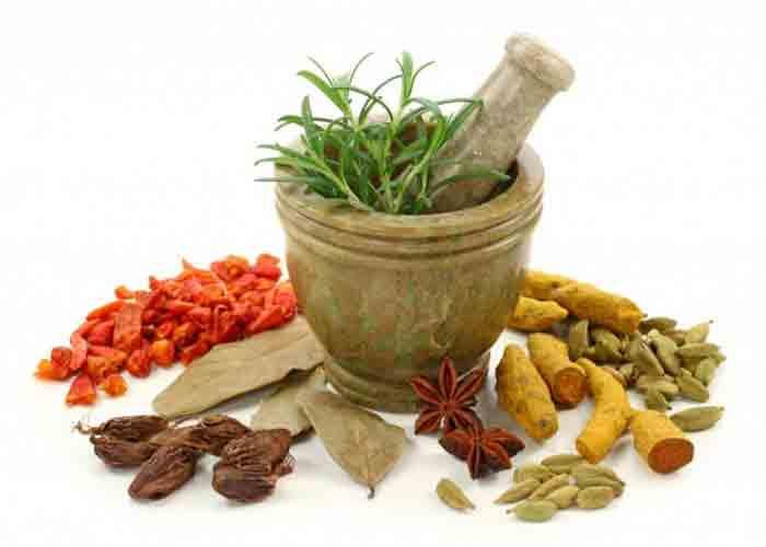 proses pembuatan jamu tanaman herbal