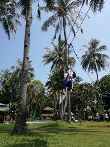 flying fox outbound seaside