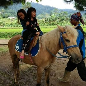 Wahana Berkuda Anak - Citra Alam Riverside