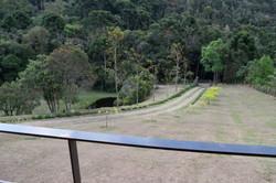 Vista para Floresta de Araucária