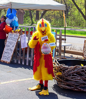 chicken1IMG_0054.jpg