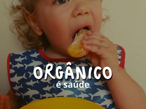 A escola como espaço de incentivo ao consumo de alimentos orgânicos