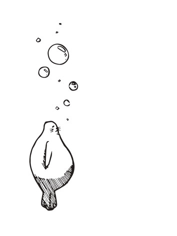 Shiru_page-0016.jpg