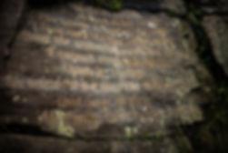 emily stone in full.jpg