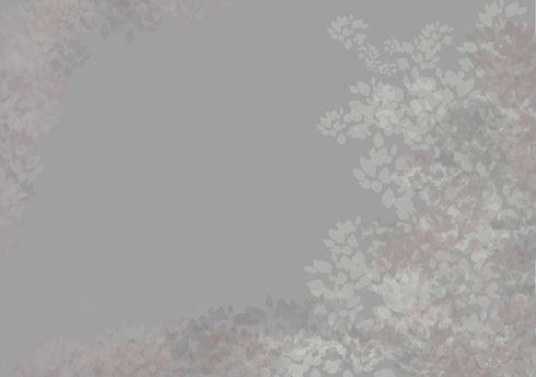 background2_edited.jpg