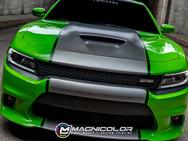 Dodge Charger - Custom Racing Stripes