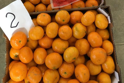 "Mandarines ""tardivo nocellato"" caisse de 6kg"