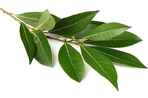 Laurier feuilles 50gr