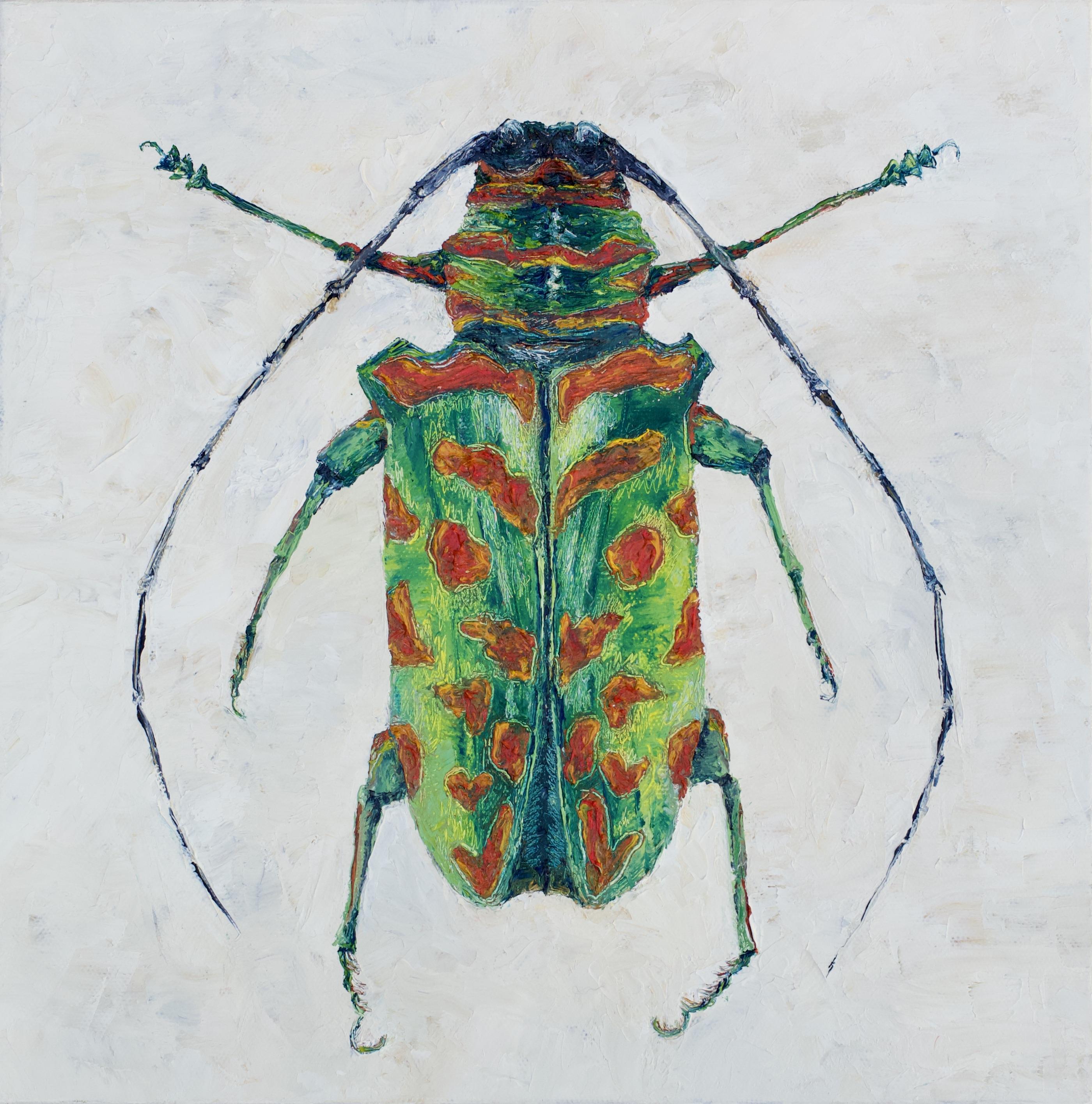 Sternotomis Bohemani Bohemani Beetle