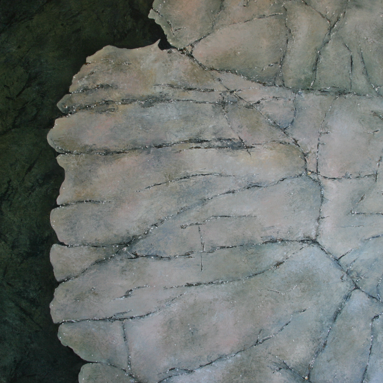 Kimmeridge Rocks 1