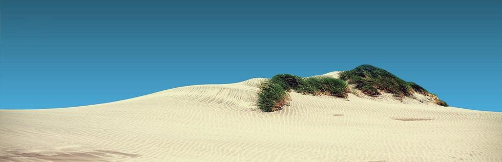 Oceano California