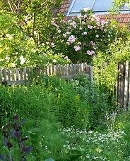 Kräutergartengestaltung und Planung