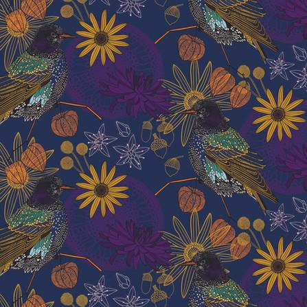 Starling Pattern
