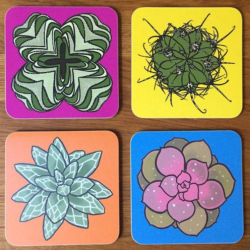 Bold succulent coasters