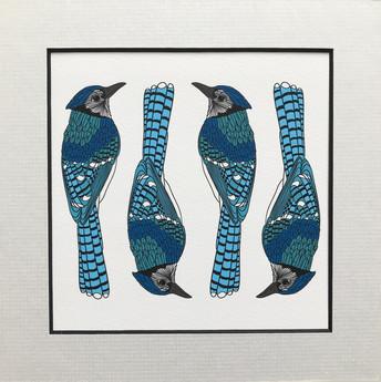 Bluejay print