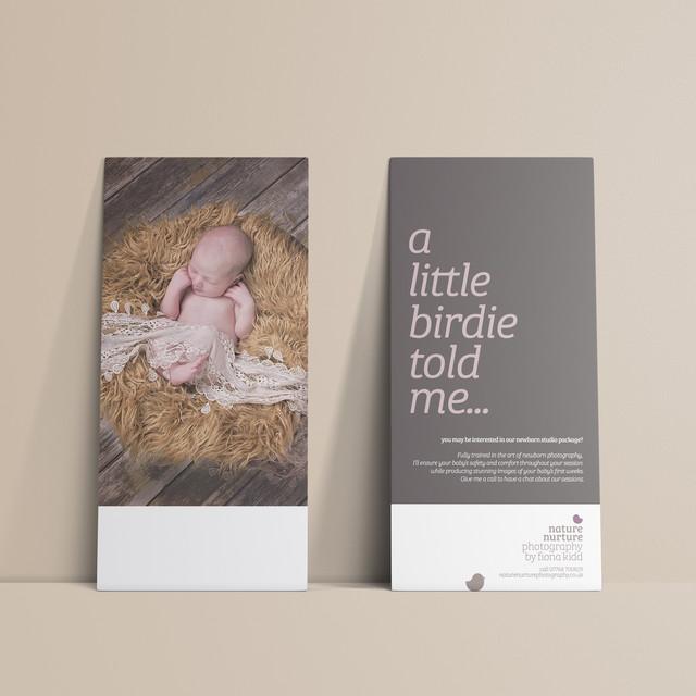 Flyer designs for Nature Nurture