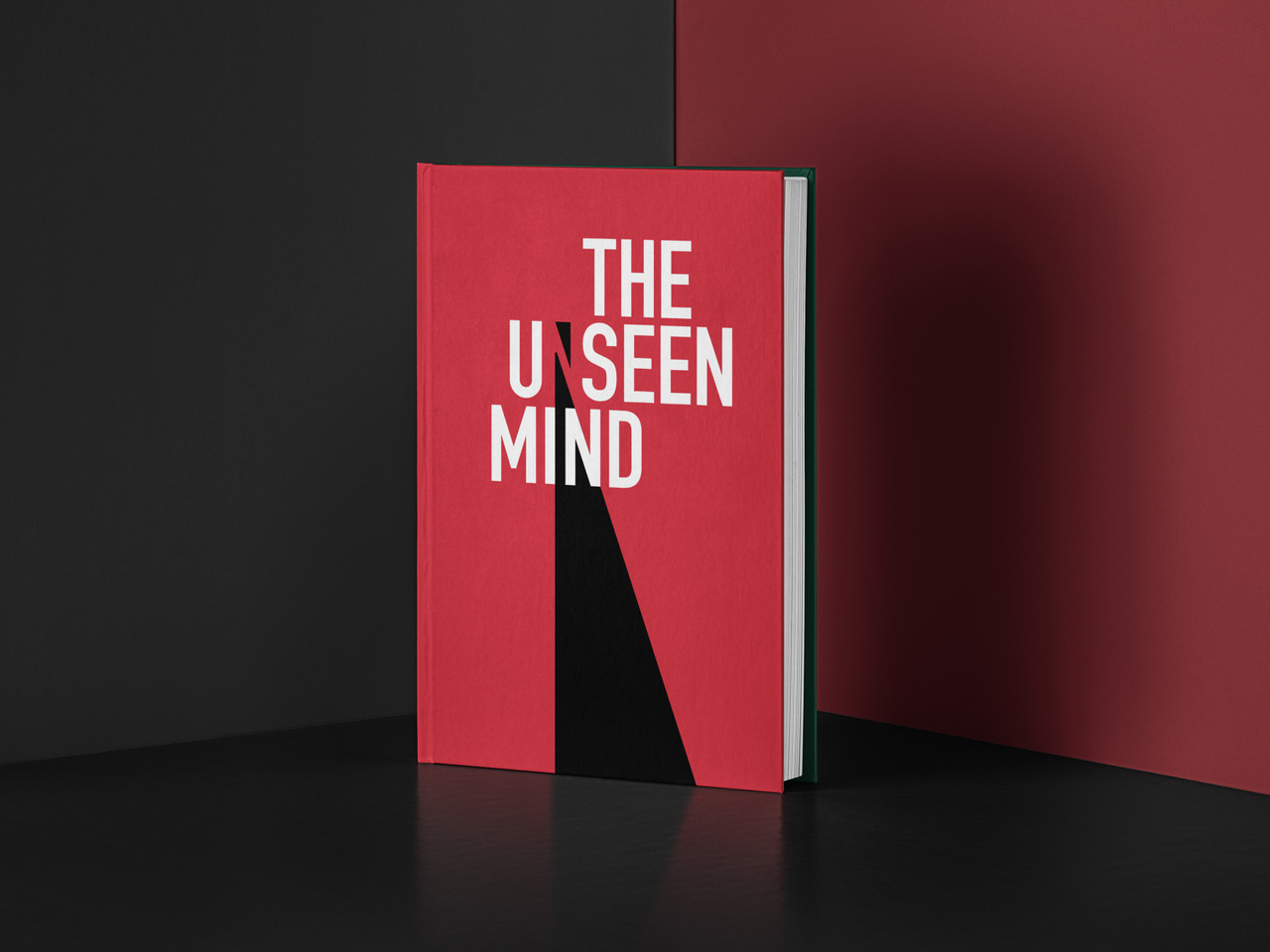 The Unseen Mind
