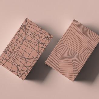 Shoebox Store packaging design