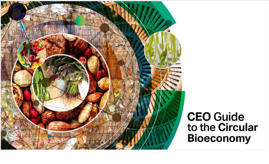 economia, bioeconomia, sustentabilidade, desperdício alimentar