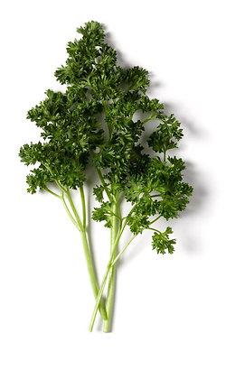 salsa frisada, curly parsley