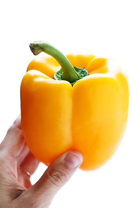 PIMENTO AMARELO, YELLOW BELL PEPPER