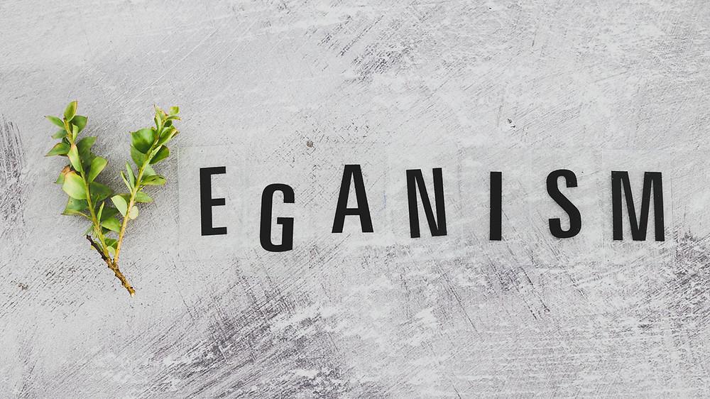 vegan, veg, veganism, vegetariano, turismo, viajar, travel, comida, restaurantes, hotelaria